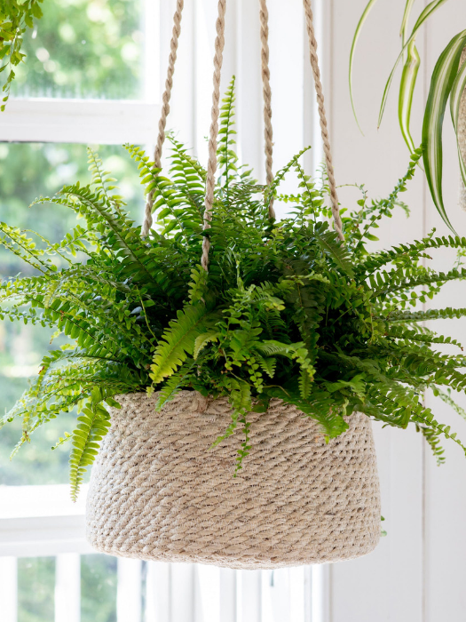 76-GT Hanging Plant Pot tapered