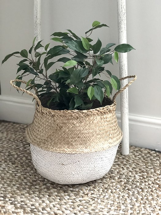 96-RH Seagrass White Dipped Belly Basket